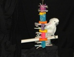 Cockatoo Toy for Feather Pluckers