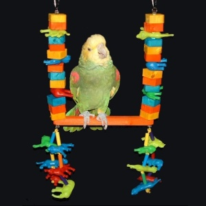 Bird Toy/Swing for Amazon and African Grey Parrots