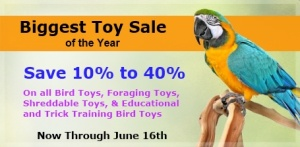Bird Toy Sale at FunTime Birdy