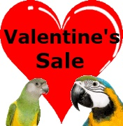 Valentine's Sale at FunTime Birdy