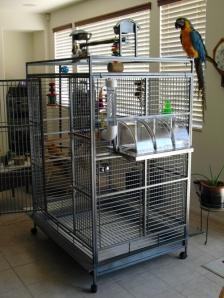Palmetto Freedom Cage