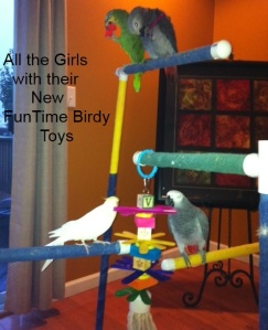 4 Tier Layer Cake Bird Toy for African Grey Size Birds