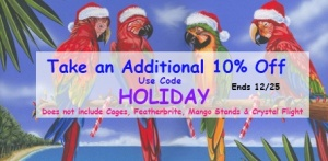 Holiday Bird Toy Sale and More at FunTime Birdy