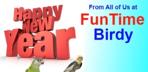 FunTime Birdy Happy New Year