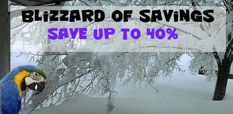Blizzard of Savings Sale at FunTime Birdy