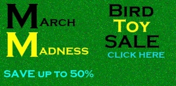 Bird Toys on Sale - March Madness