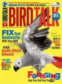 Bird Talk Magazine