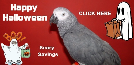 FunTime Birdy Halloween Sale